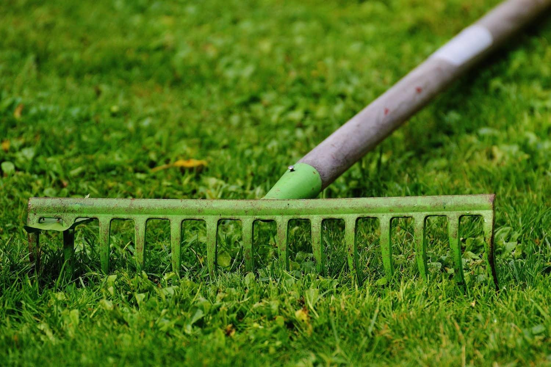 So vermeiden Sie Unfälle bei der Gartenarbeit
