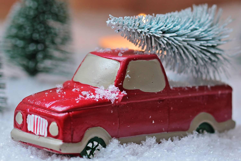 Weihnachtsbaum: So transportiert man richtig